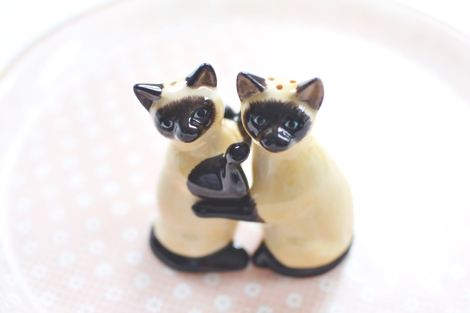 quirky homeware, cat salt and pepper shakers,