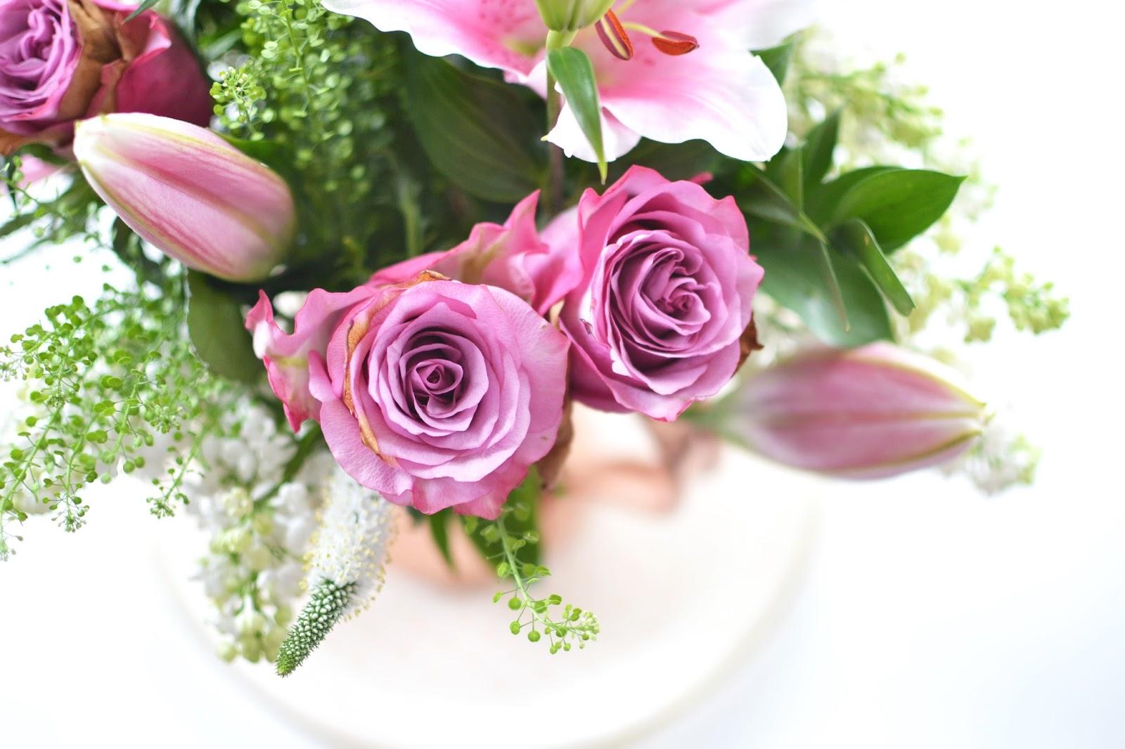 beautiful deep pink roses