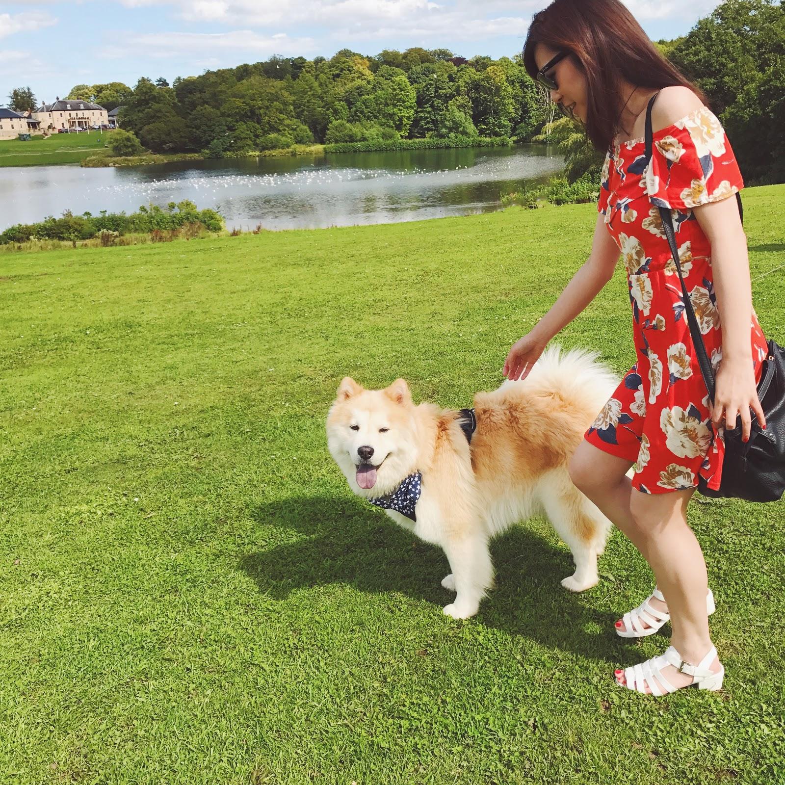 Red Floral Off-The-Shoulder Dress, uk fashion blogger